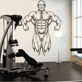 Bodybuilder falmatrica