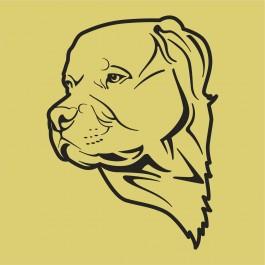 Kutya fej