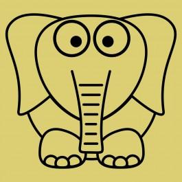 Elefánt kölyök