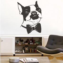 Francia bulldog elegánsan falmatrica