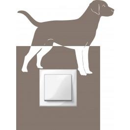 Labrador kapcsolómatrica