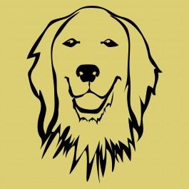 Aranyos kutya