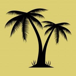 Pálmafa