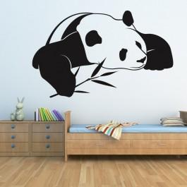 Panda falmatrica