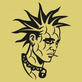 Punk falmatrica