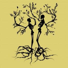 Csontváz fa